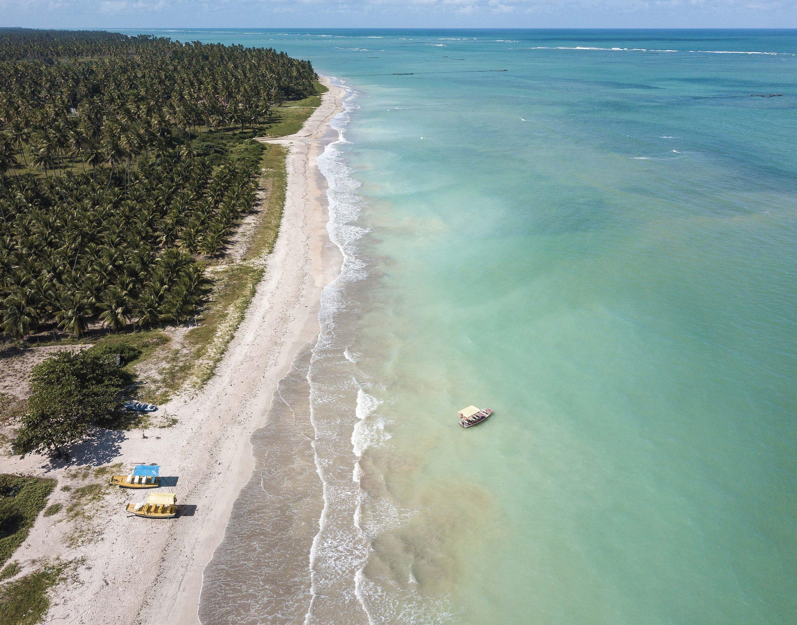 foto aérea da praia de são miguel dos milagres com um barco no mar e um vasto coqueiral compondo